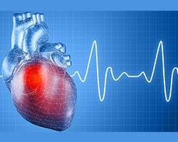 تحویل نهایی پروژه قلب و عروق